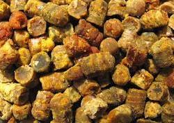 Перга для подкормки пчёл