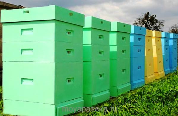 Раскраска ульев в разные цвета для ориентира пчёлам